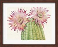 Framed Desert Blossoms II