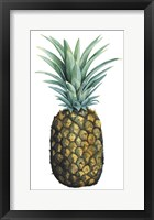 Watercolor Pineapple I Framed Print