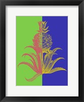 Framed Pineapple Mix I
