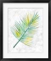 Ocean Side Palms  IV Framed Print