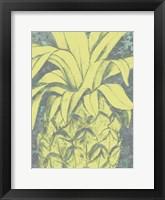 Framed Kona Pineapple I