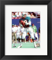 Framed Dan Marino Action