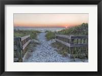 Framed Evening Walk