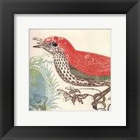 Framed Red Bird