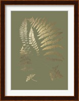 Framed Gold Foil Ferns II on Mid Green - Metallic Foil