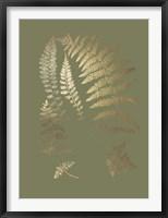 Gold Foil Ferns II on Mid Green - Metallic Foil Framed Print