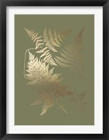 Framed Gold Foil Ferns III on Mid Green - Metallic Foil