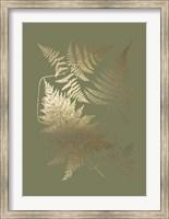 Framed Gold Foil Ferns III on Mid Green - Metallic Foil