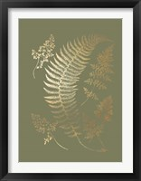 Framed Gold Foil Ferns IV on Mid Green - Metallic Foil