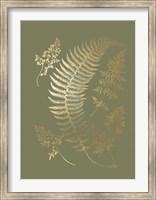 Framed Gold Foil Ferns IV on Mid Green - Metallic Foil