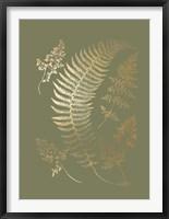 Gold Foil Ferns IV on Mid Green - Metallic Foil Framed Print