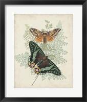 Butterflies & Ferns I Framed Print