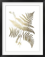 Gold Foil Ferns I - Metallic Foil Framed Print