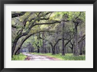 Dirt Road I Framed Print