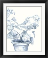 Framed Blue Geranium I