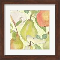 Framed Pear Medley II