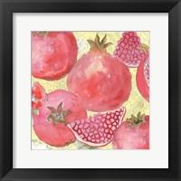 Pomegranate Medley I Framed Print
