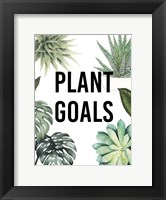 Framed Plant Love II