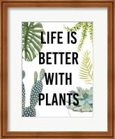 Framed Plant Love III