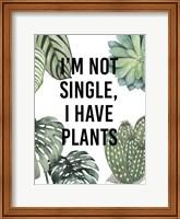 Framed Plant Love V