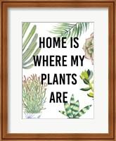 Framed Plant Love VI