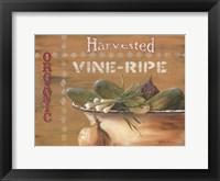 Framed Vine Ripe