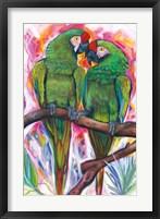 Framed Two Parrots