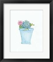Framed Pink Cactus Flower