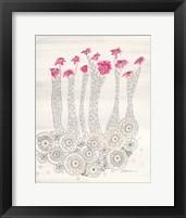 Framed Pink Aster