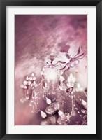 Framed Rose Pink