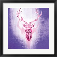 Purple Deer Framed Print