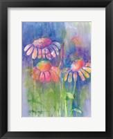 Cone Flower II Framed Print