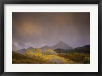 Framed Mountain Aspens