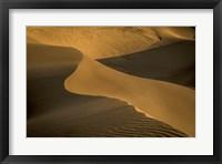 Framed Sand Dunes