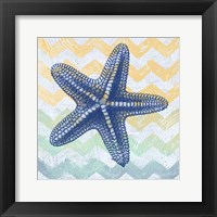 Chevron Star Fish Framed Print