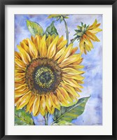 Framed Audreys Sunflower