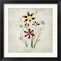 Framed Wild Flowers One