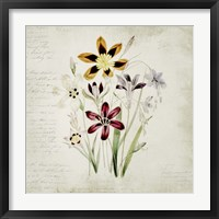 Framed Wild Flowers One