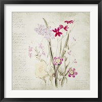 Wild Flowers Two Framed Print