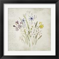 Framed Wild Flowers Three
