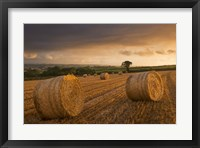 Framed Bales of Hay