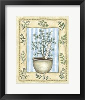 Framed Rosemary