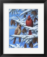 Framed Cardinals