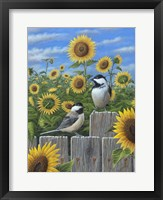 Framed Chickadees And Sunflowers