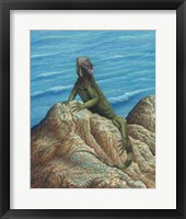 Framed Iguana