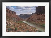 Framed Along The Colorado