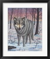 Framed Lone Wolf