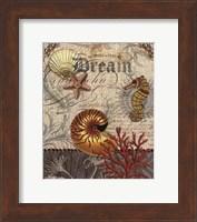 Framed Coastal Ephemera 1