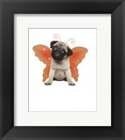 Framed Wings - Pug
