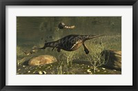 Framed Hupehsuchus Marine Reptiles Swimming In Triassic Waters